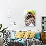 Eau Zone Home Bild - Tierbilder – Glückliches Faultier am Baum hängend- Poster Fotodruck in höchster Qualität für Eau Zone Home Bild - Tierbilder – Glückliches Faultier am Baum hängend- Poster Fotodruck in höchster Qualität