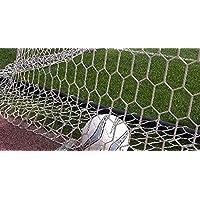 LA RETE Coppia reti Calcio Ridotto Misura 5x2 Metri Maglia Quadrata Professionali con profondità