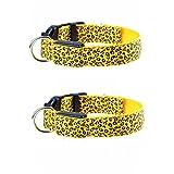 LED-Halsband für Hunde, leuchtend, verstellbar, Sicherheits-Hundehalsband mit LED-Beleuchtung (2Stück, langlebig, reflektierend, Blinklicht, Nylon, Sicherheit bei Nacht, für Haustiere, Hunde, Katzen