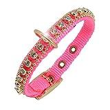 Ernst Koch 5403004.0 Nylon-Starlight-Halsband mit hochwertigem Strass für Kleinhunde, S, rosa