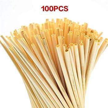 Zuperzozial Lot de 60 pailles de bl/é compostables