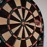 20g Soft Tip Dart Set 12 Stück + 15 Flights + 18 Spitzen | Dartpfeile für Anfänger & Profi | Softdarts aus Messing mit Aluminium Schaft & Gummiringen für elektronische Dartscheibe - 3
