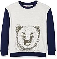 RED WAGON Boy's Animal Graphic Sweat, Multicoloured (Grey/Navy), 10 Years