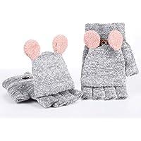 Guantes sin dedos para Mujer Chicas, LILICAT - Guantes Invierno Más terciopelo y guantes espesados (Un tamaño, Gris)