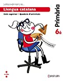 Supercompetents en... Llengua catalana. 6 Primària. Construïm. Quadern - 9788466138178