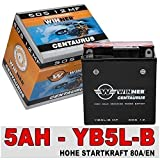AGM Motorrad Batterie 5Ah - 80A/EN YB5L-B DIN 50512 CB5L-B MUZ ETZ 251