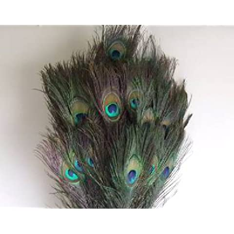 Plumas de pavo real natural aprox. 80 – 90 cm de largo