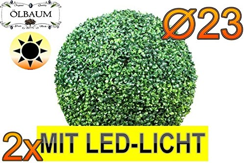 2X Buchsbaum mit LED-Lichtband große Buchsbaumkugel Durchmesser 23 cm 230 mm grün dunkelgrün