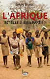 Afrique est-elle si bien partie ? (HORS COLLEC) - Format Kindle - 9782361062187 - 15,99 €
