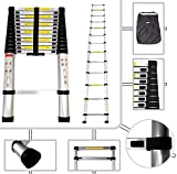 Todeco Foldable Telescopic Ladder, 12.5-feet, with a Carry Bag