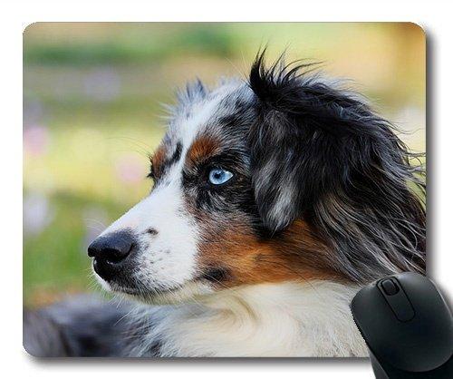 Custom - Mousepad, Golden Retriever Welpen, Ein australischer schäferhund Blaue Mel, Hund, Schwein, Hund Gaming Mouse Pad -