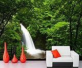3D-Fresken, Naturwälder, Ästhetik, spektakuläre Wasserfälle, Poststube, Fernseher, Wand, Schlafzimmer, Hintergrunddekoration, 400 × 200 cm