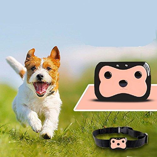 JOJOHUN Mini Mascota Rastreador GPS Mascotas Perro Gato Niños Collar ID Localizador...