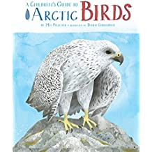 A Children's Guide to Arctic Birds (English Edition)