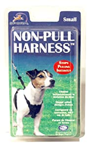 Company of Animals » Non-Pull Harness » Small from Company of Animals