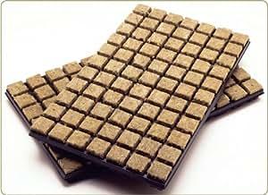 GroDan Cuttings Seeds Cubes x 35