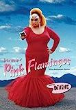 Pink Flamingos: 25Th Anniversary Edition [Edizione: Stati Uniti] [Italia] [DVD]