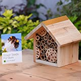 Plant Theatre Bee Hotel & Flower Seeds for Bees - Gift Boxed - Seeds Included, Great