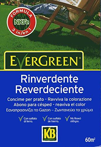 evergreen-rinverdente-da-2-kg