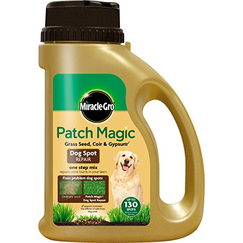 Für Hunde Gras Patch Von (Miracle-Gro Patch-Magie Hund Spot Repair [Gartenartikel])