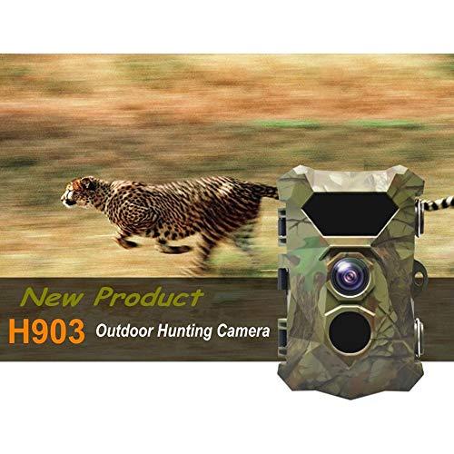 TONGTONG Fotofallen Wild Camera Scout Guard Hunter Kameras 12MP IR Night Vision Trail Hunting Camera Waterproof Scouting Camcorder - Camera Hunter