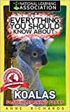 Everything You Should Know About: Koalas