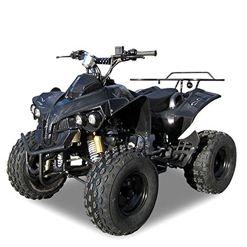 Kinder Quad S-10 125 cc Motor Miniquad Midiquad 125 ccm Warrior (Schwarz)