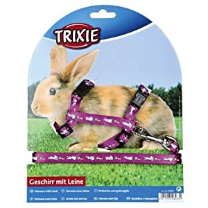 Trixie Rabbit Harness & Lead Set With Motif