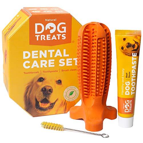 Natural Dog Treats Hundezahnbürste und Zahnpasta mit Rindfleischgeschmack, Hunde Zahnpflege-Set Kauspielzeug, 100{a8f7cc7baaecfae4d008b26bb31dec10a86e0662a3c01836ecbbd5434a597e92} Natürlich Weichem Silikon