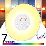 Wecker Wake Up Light Lichtwecker Wecker mit Licht ,7 Wecktöne (inkl. 2 Naturklänge und FM), 7Farben, 10 Dimmstufen, Sonnenaufgangssimulator, Nachtlicht mit FM Radio,ein Geschenk für Frauen, Männer, Freunde ,Kinder oder Erwachsene