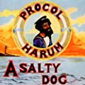 A Salty Dog...Plus: Remastered