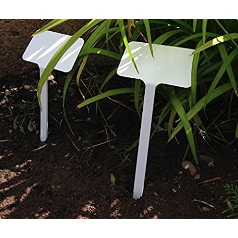 Yuzet–20testa T etichette Pianta Fiore Grande superficie di scrittura 16cm/6