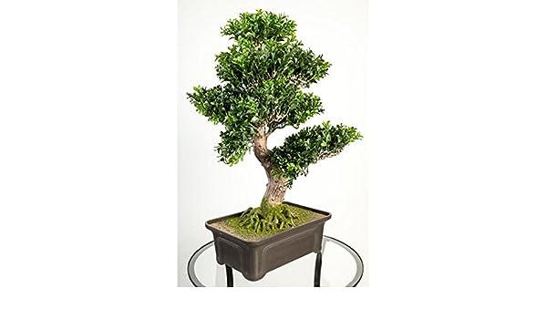 Artplants bonsai bosso artificiale in taglio fogli cm