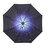 LYJZH Regenschirm - robust, windsicher und sturmfest, windfester Taschenschirm Klarer Regenschirm...