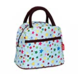 Aolevia Multifunctional Lunch Bag Wasserdichte Tasche Handtasche Picknicktasche Ideal für Outdoor (Style 4)