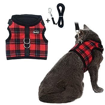 Bingpet Harnais avec laisse pour chat. Maille douce et enveloppante, harnais réglable - idéal pour promener les chatons sans qu?ils ne s?échappent