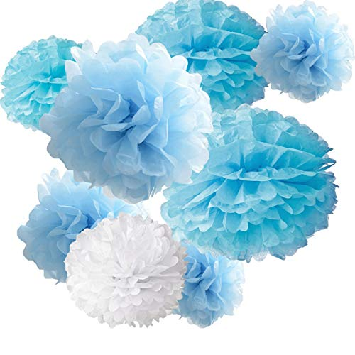nging Paper Pom-poms, Hmxpls Blume Ball Hochzeit Outdoor Dekoration Premium Seidenpapier Pom Pom Blumen Craft Kit (Blau & Weiß), 8