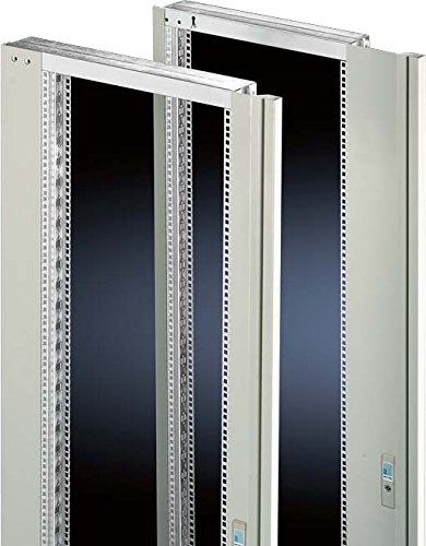 Preisvergleich Produktbild Rittal Schwenkrahmen SR 2347.235 mittig,  RAL7035 Komponente für den Ausbau (Schaltschrank) 4028177165243