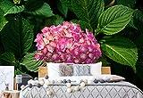 Wallsticker Warehouse Blumen Hortensie Rosa Fototapete Fotomural - Wandbild - Tapete - 184cm x 254cm / 2 Teilig - Gedrückt auf 115gsm Muralpapier - 1561P4A - Blumen