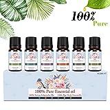 Ätherische Öle Set, Siman Duftöle für Diffuser und Aromatherapie, 100% Reines Bio naturrein Aroma-Öl, 6 Verschiedene Aromen - Lavendel, Teebaum, Eukalyptus, Zitronengras, süße Orange, Pfefferminze