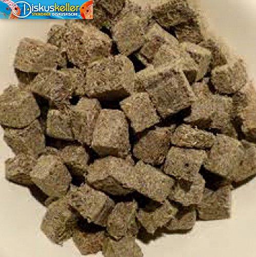 Diskusgold-California-Blackworm-FD-Glanzwrmer-gefriergetrocknet-500-ml-in-Wrfeln-in-1-A-Qualitt