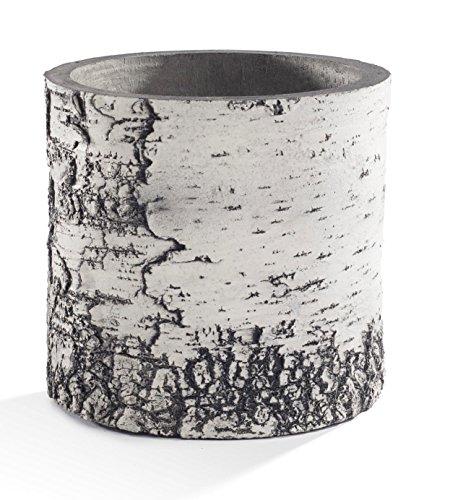 Surreal Pflanzgefäßen VB6Vertikal Übertopf, 20,3cm, Birke