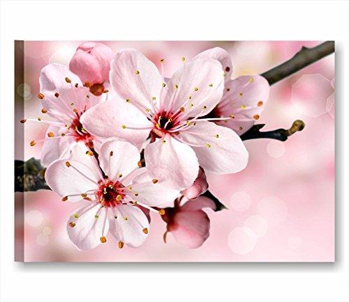 flores-pesco-7-cuadro-moderno-70-x-50-cm-impresion-sobre-lienzo-sin-cuadros-modernos-muebles-de-dorm