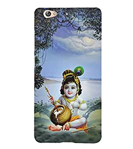 Bhagwan Krishna 3D Hard Polycarbonate Designer Back Case Cover for Gionee S6