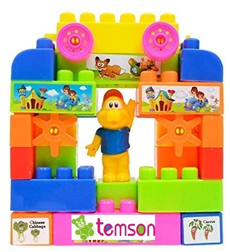 TEMSON Multi Colored Play and Learn Building Blocks Imagination for Kids Non-toxic Shapes Assembling Blocks Plastic Educational Learning Building Block Models Set Construction Toy for Kids (34 Pcs) (Multi color)