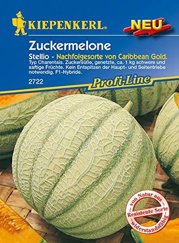 Kiepenkerl 2722 Zuckermelone Stellio F1 (Zuckermelonensamen)