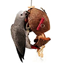 Coco De Nut Papageienspielzeug, aus Naturmaterialien, groß