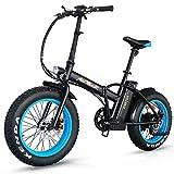 Addmotor® Motan M150 500W 48V 10.4AH E-Bike Elektrofahrrad Klapprad Faltrad (Blau)
