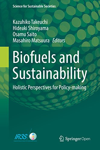 Biofuels And Sustainability: Holistic Perspectives For Policy-making (science For Sustainable Societies) por Kazuhiko Takeuchi epub