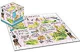 Unbekannt Robert Frederick Wanderungen Edinburgh Cube Puzzle, sortiert, 100Stück